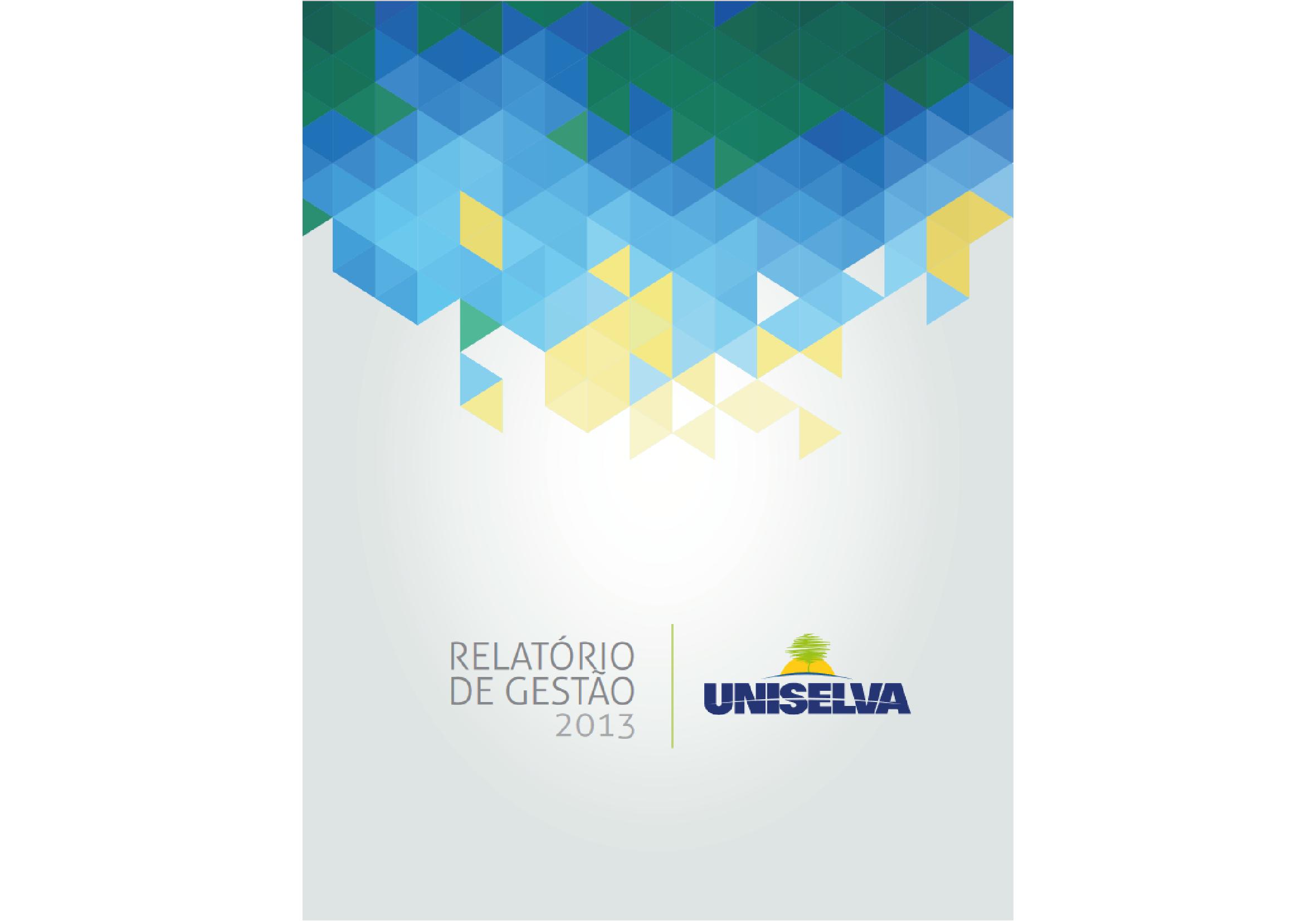 Relatório de Gestão - 2013