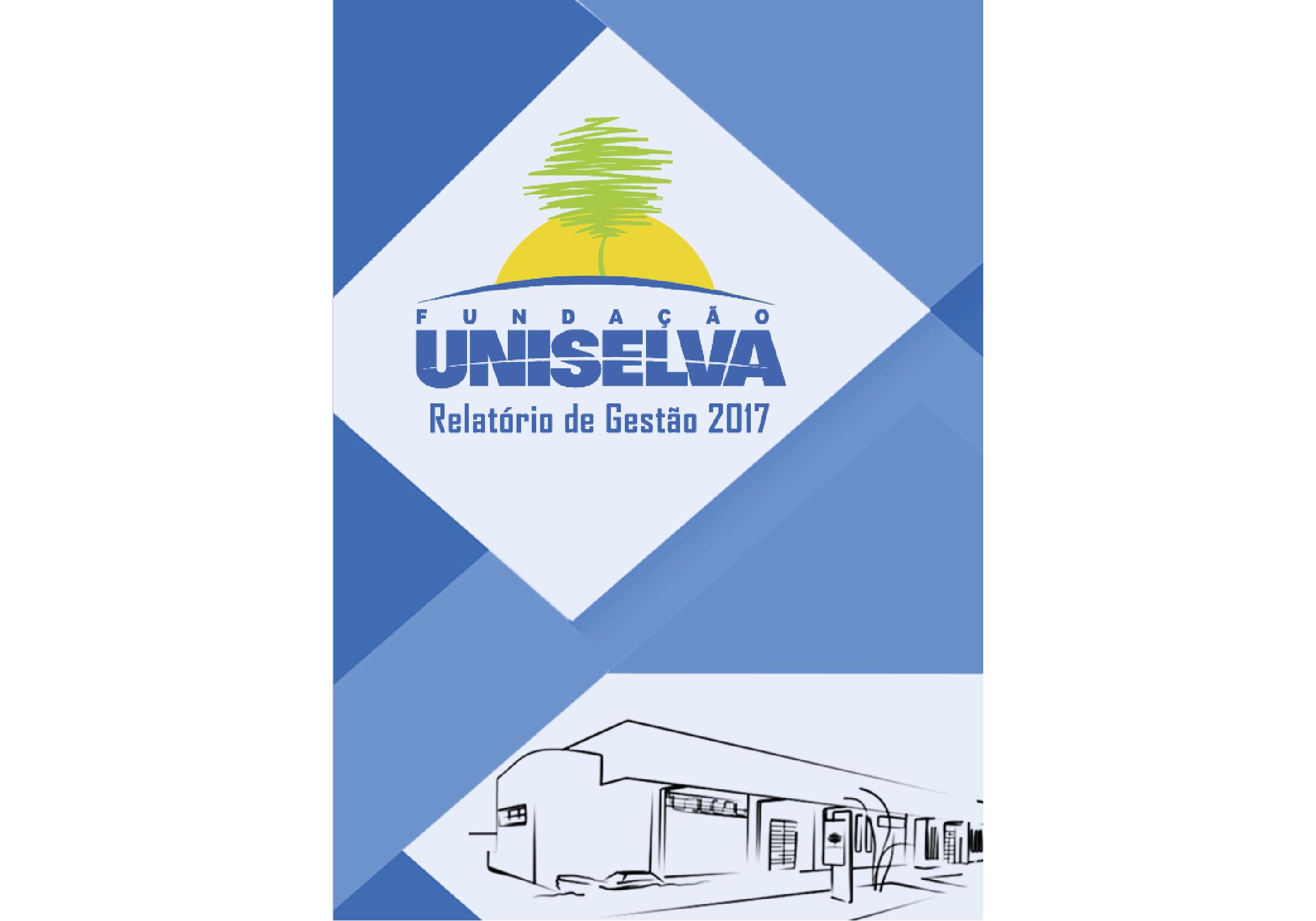 Relatório de Gestão - 2017